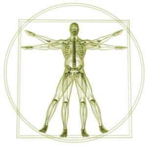 Manualna terapija Bruno Davinci Balance 300x300